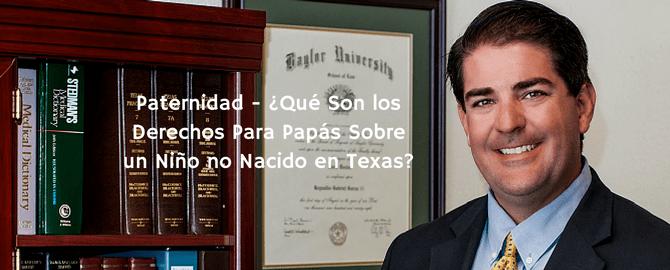 Custodia de los Hijos Abogados en Brownsville TX